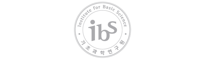 Logo of IBS, scaled